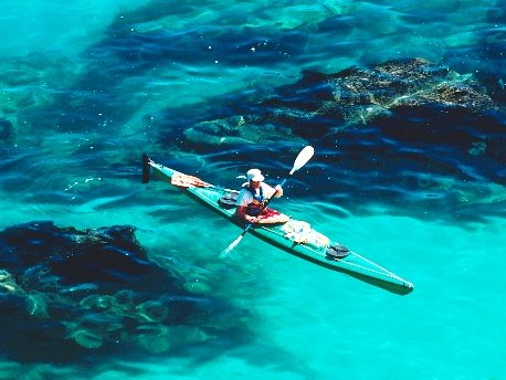 Bioluminescent Canoe Tour Puerto Rico